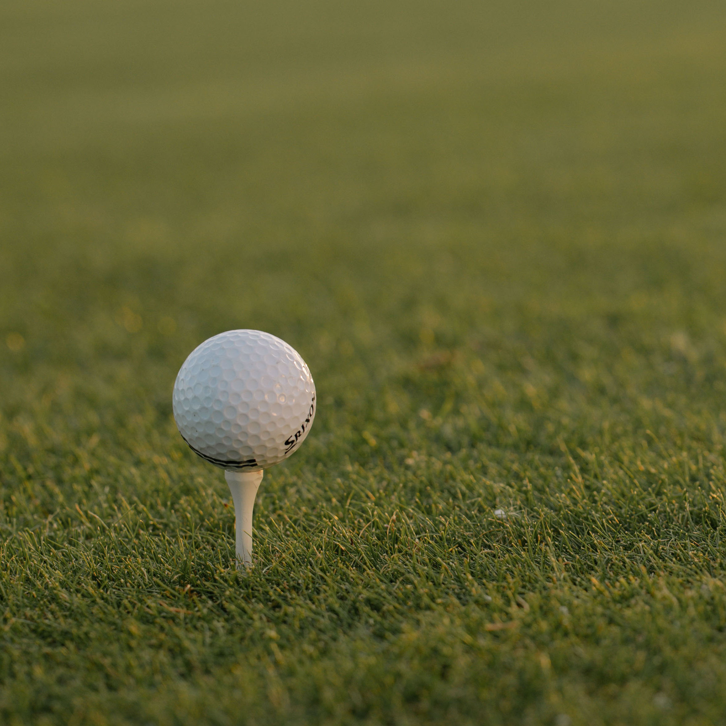 Golf Ball on a golf tee